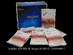 obat herbal ejakulasi dini pada peria
